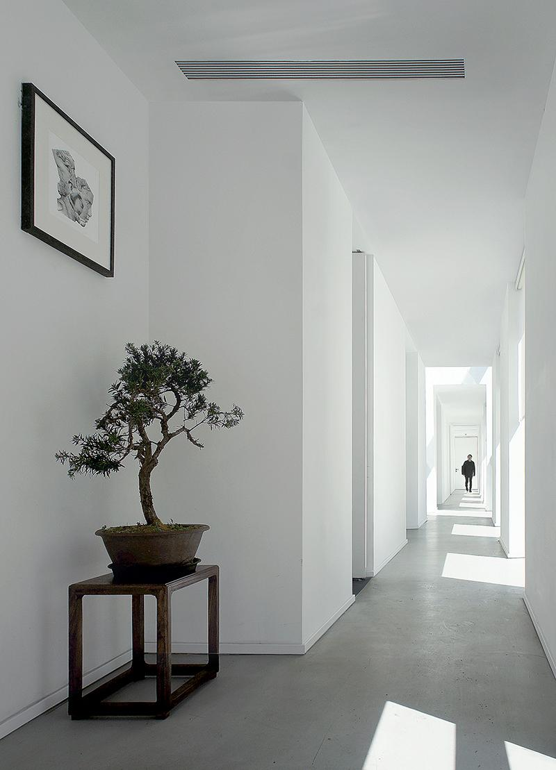 A serene corridor, lit by daylight through block-like windows to the side, connects the house